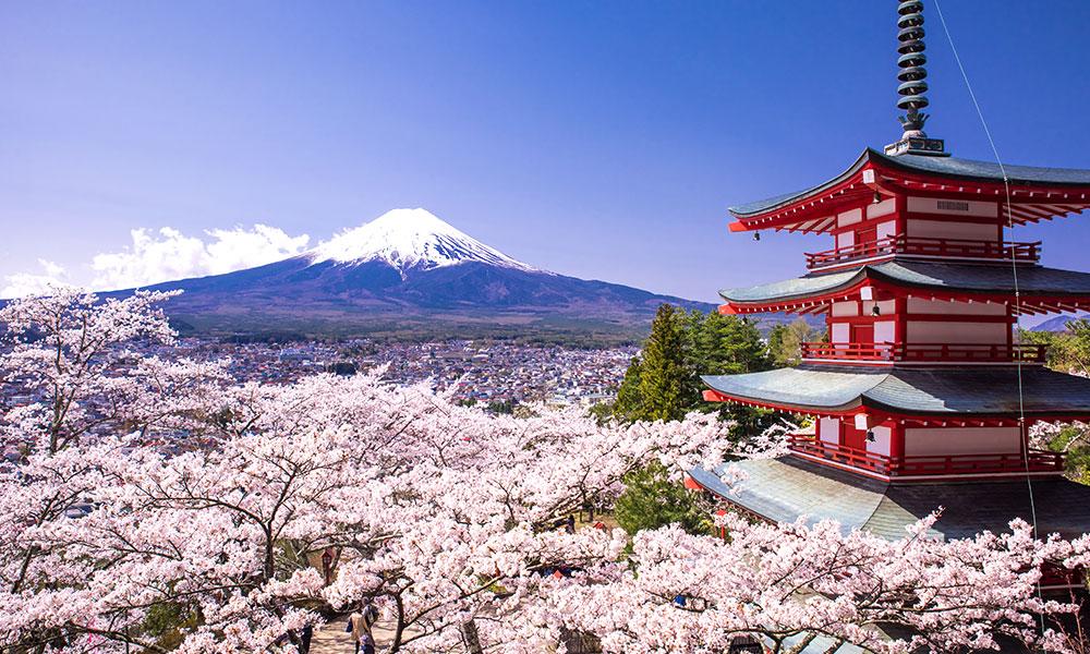 भिसा सकिने विदेशीहरुलाई जापान इमिग्रेशनद्वारा थप एक महिना सहुलियत